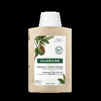 Klorane Beurre Cupuaçu Bio Shampoing Cheveux Très Secs 200ml à BARCARÈS (LE)
