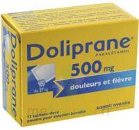 DOLIPRANE 500 mg Poudre pour solution buvable en sachet-dose B/12 à BARCARÈS (LE)
