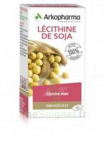 Arkogélules Lécithine De Soja Caps Fl/45 à BARCARÈS (LE)