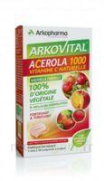 Arkovital Acérola 1000 Comprimés à croquer B/30 à BARCARÈS (LE)
