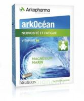 Arkocean Magnesium Marin Vitamine B6 Gélules nervosité fatigue B/30 à BARCARÈS (LE)