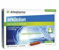 Arkocean Magnesium Marin Solution buvable caramel 20 Ampoules/10ml à BARCARÈS (LE)