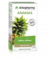 Arkogélules Ananas Gélules Fl/45 à BARCARÈS (LE)