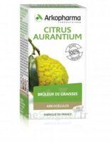 Arkogélules Citrus Aurantium Gélules Fl/45 à BARCARÈS (LE)