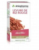 Arkogélules Levure de riz rouge Gélules Fl/45 à BARCARÈS (LE)