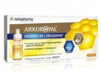 Arkoroyal Défenses Naturelles Gelée adulte 7 Doses/10ml à BARCARÈS (LE)