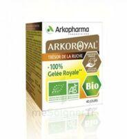Arkoroyal 100% Gelée Royale Bio Gelée Pot/40g à BARCARÈS (LE)