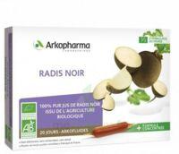 Arkofluide Bio Ultraextract Radis Noir Solution Buvable 20 Ampoules/10ml