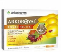 Arkoroyal Royal'Fruits Gelée royale Goji Grenade Baobab Solution buvable 20 Ampoules/10ml à BARCARÈS (LE)