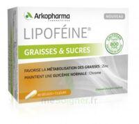 Lipofeine Graisse et Sucres Gélules B/60 à BARCARÈS (LE)