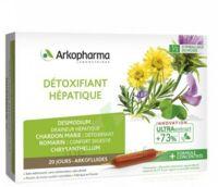 Arkofluide Bio Ultraextract Solution Buvable Détoxifiant Hépatique 20 Ampoules/10ml à BARCARÈS (LE)