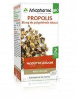 Arkogélules Propolis Bio Gélules Fl/45 à BARCARÈS (LE)