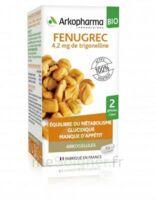 Arkogélules Fenugrec Bio Gélules Fl/40 à BARCARÈS (LE)