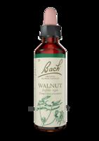 Fleurs De Bach® Original Walnut - 20 Ml