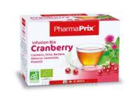 Infusion BIO Cranberry à BARCARÈS (LE)