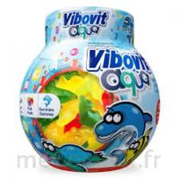 Vibovit Aqua Gomme 50 à BARCARÈS (LE)