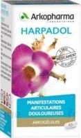 ARKOGELULES HARPAGOPHYTON Gélules Fl/150 à BARCARÈS (LE)