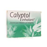 CALYPTOL INHALANT, émulsion pour inhalation par fumigation à BARCARÈS (LE)