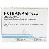 EXTRANASE 900 nK, comprimé enrobé gastro-résistant à BARCARÈS (LE)