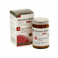 VITAMINE B12 GERDA 250 microgrammes, comprimé sécable à BARCARÈS (LE)