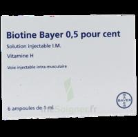 BIOTINE BAYER 0,5 POUR CENT, solution injectable I.M. à BARCARÈS (LE)