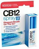 Cb 12 Spray Haleine Fraîche 15ml à BARCARÈS (LE)