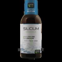 Santé Verte Silicium Solution buvable Fl/500ml à BARCARÈS (LE)