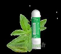 Puressentiel Respiratoire Inhaleur Respiratoire aux 19 Huiles Essentielles - 1 ml à BARCARÈS (LE)