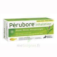 PERUBORE Caps inhalation par vapeur inhalation Plq/15 à BARCARÈS (LE)