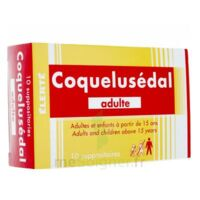 COQUELUSEDAL ADULTES, suppositoire à BARCARÈS (LE)