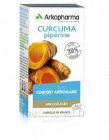 Arkogelules Curcuma Pipérine Gélules Fl/45 à BARCARÈS (LE)