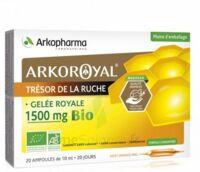 Arkoroyal Gelée royale bio 1500 mg Solution buvable 20 Ampoules/10ml à BARCARÈS (LE)