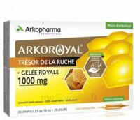 Arkoroyal Gelée royale 1000 mg Solution buvable 20 Ampoules/10ml à BARCARÈS (LE)