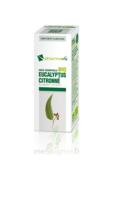 Huile Essentielle Bio Eucalyptus Citronné à BARCARÈS (LE)