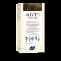 Phytocolor Kit coloration permanente 6.3 Blond foncé doré à BARCARÈS (LE)