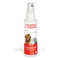 Clément Thékan Caniderma Solution externe cicatrisant Spray/125ml à BARCARÈS (LE)