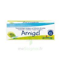 Boiron Arnigel Gel T(alumino-plastique)/45g à BARCARÈS (LE)