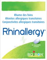 Boiron Rhinallergy Comprimés B/40 à BARCARÈS (LE)