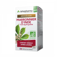 Arkogélules Marronnier D'inde Bio Gélules Fl/45 à BARCARÈS (LE)